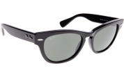 Ray Ban Sunglasses RB4169