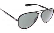 Ray Ban Sunglasses RB4180