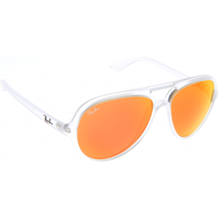 Ray Ban Rb4125 Reviews   United Nations System Chief Executives ... 6c8abbcff287