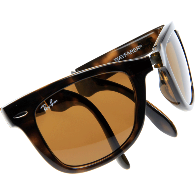 ray ban polarized wayfair tortoise svn